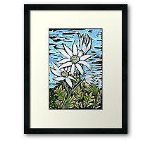 Flannel Flower ~ Healing & Calm  Framed Print