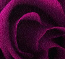 Pink Textured Rose Sticker