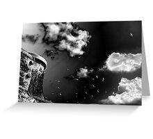 black&white 1 Greeting Card