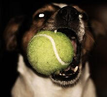 Have a ball by Niklas Aronsson