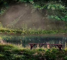 Alexander's Bench by Ted Byrne