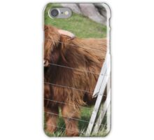 New Zealand Cattle iPhone Case/Skin