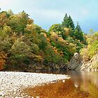 Autumn at the pass of Killiecrankie by Stuart  Fellowes