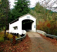 Wild Cat Covered Bridge Over the Siuslaw River by Chuck Gardner