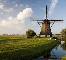 Dutch Windmills by Ryan Young