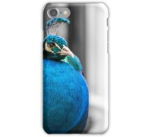 The Posing Peacock iPhone Case/Skin