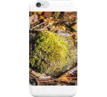 rock with moss  iPhone Case/Skin