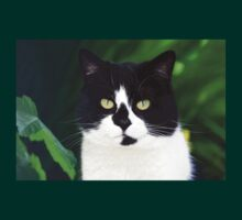 Black and white cat looking at camera T-Shirt