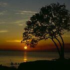 Sunset on Prospect Beach by claudefletcher