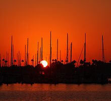 Marina Del Rey Sunset by Amos Zhang