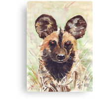 African Wild Dog Canvas Print