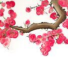 Gratitude Blossom 2  by energymagic