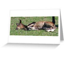 So Tired Greeting Card
