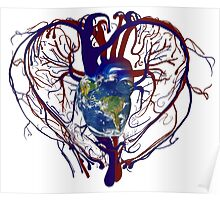 "Anatomical Kind ""Earth Heart"" Medical Circulatory Get Well Kindness Poster"