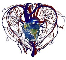"""Anatomical Kind """"Earth Heart"""" Medical Circulatory Get Well Kindness Photographic Print"""