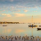 Golden Light - Victoria Point Qld Australia by Beth  Wode