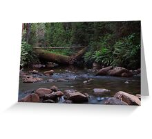 Arve River Greeting Card