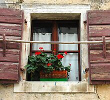 Windows & Shutters - 4 by Denis Molodkin