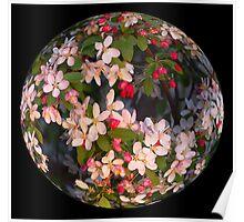 Blossom Ball Poster