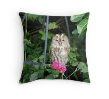 Close up Owl Throw Pillow
