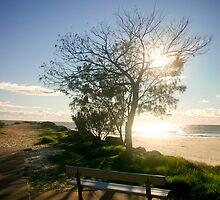 Sunrise Over Park Bench - Tallebudgera Gold Coast by Brad Walker