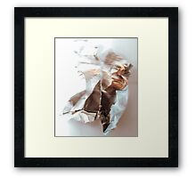 Fuzzy logic (Scrunched up Celebrities) Framed Print