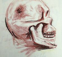 Skull by Alan Hogan