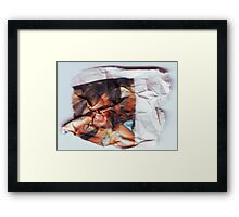 Grassy Knowles  (Scrunched up Celebrities) Framed Print