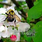 what a great day to bee alive!! by LoreLeft27