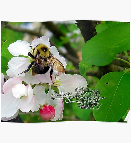 what a great day to bee alive!! Poster