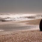Jonty on Beach by Annie Austin