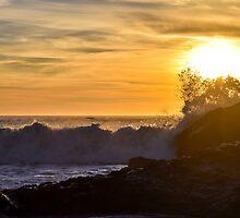 Golden Waves Crashing by smilinginsonoma