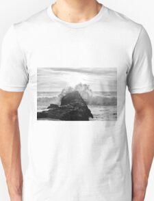 Pacific Zen T-Shirt