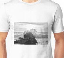 Pacific Zen Unisex T-Shirt