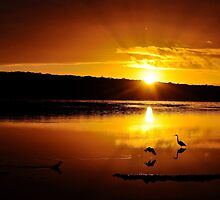 What a lovely start to the day. by Ian Berry