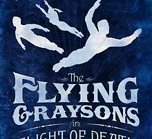 Flying Graysons by ebrownspence
