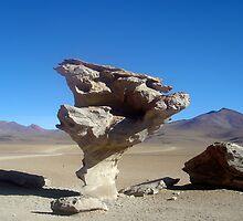Arbol de Piedra (Sone tree) in the Bolivian desert by mojgan