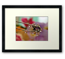 Through the eye of a safety pin Framed Print
