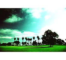 Bay Park San Diego Photographic Print
