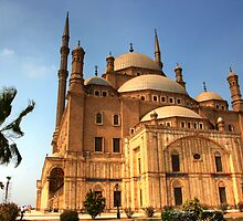 The Mosque of Muhammad Ali Pasha by Roddy Atkinson