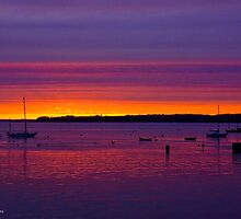 Sunrise Skyline, Rockland Harbor, Maine Coast by Richard VanWart