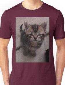 Kitten. Unisex T-Shirt