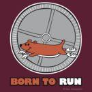 BORN TO RUN by Max Alessandrini
