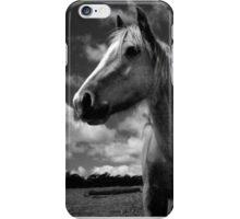 Rural iPhone Case/Skin