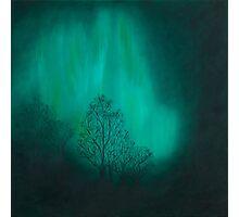 Night Music Photographic Print