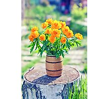 vase filled by beautiful spring orange flowers of globeflowers on the stub Photographic Print