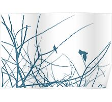 White birds in trees Poster