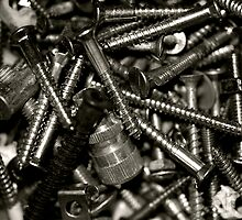 """Tool Box Collections- Screws"" by Bradley Shawn  Rabon"