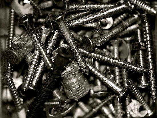 """Tool Box Collections- Screws"" by Bradley Shawn  Rabon"
