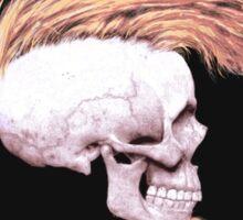 Serie 3/4. Nº 19 Metallica Sticker